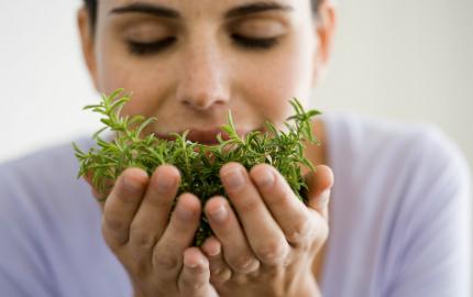 naturläkemedel mot stress