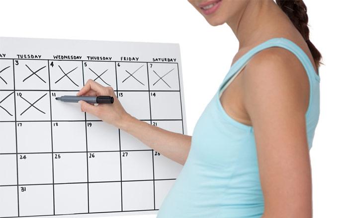 räkna ut vilken vecka gravid