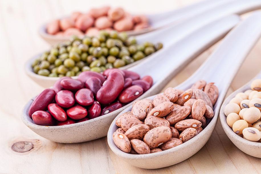 baljväxter protein