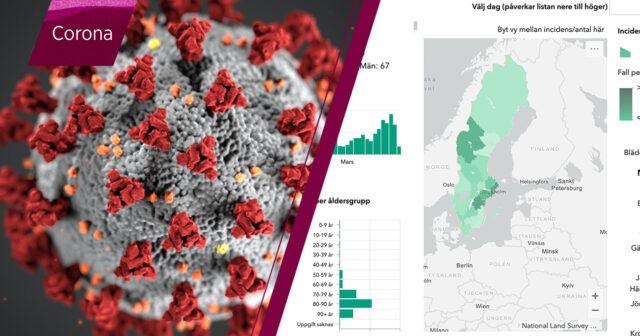 Statistik Over Corona I Sverige Har Finns Den Mabra