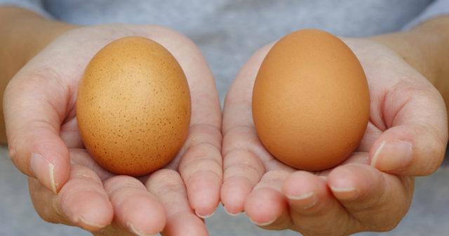 kan ägg bli gamla i kylen