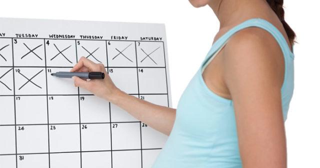 gravid hur länge