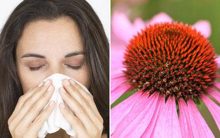 basta bort förkylning