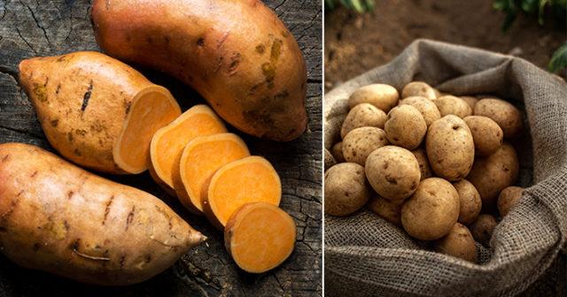 hur många kalorier innehåller potatis