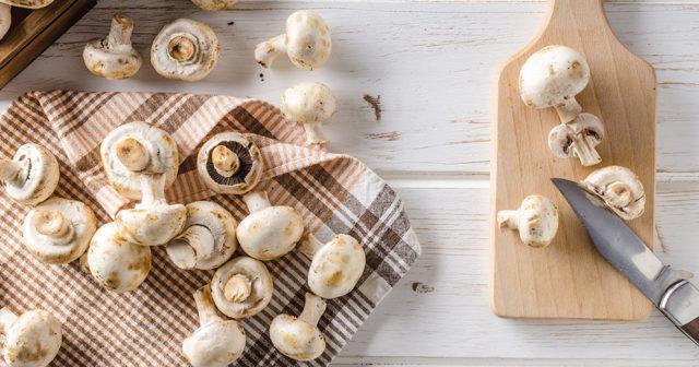 9 goda matsvampar du kan plocka själv