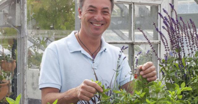 Tareq Taylor tipsar om bästa kryddväxterna