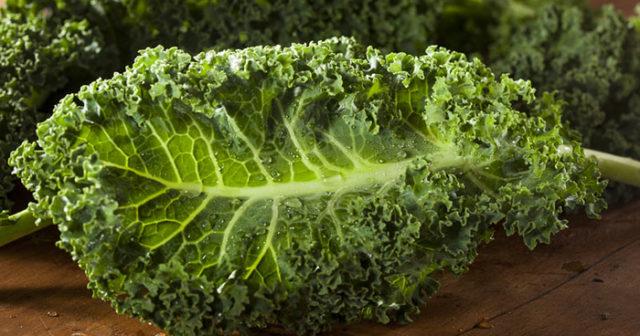 Grönkål är rena supermaten! Här är 7 goda recept