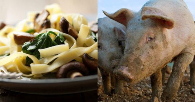 varför är det bra att äta vegetariskt