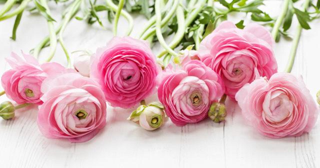 hur tackar man för blommor