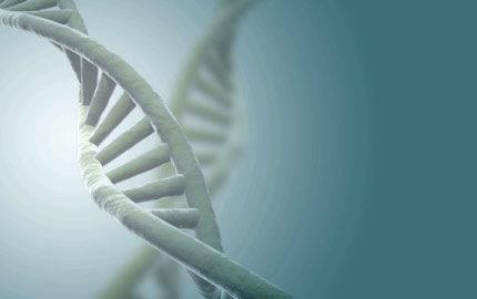 DNA-bantning - nästa stora trend?