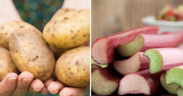 vad händer om man inte äter grönsaker