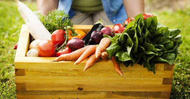 Odla egna grönsaker.
