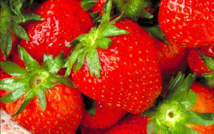 hur många kalorier innehåller jordgubbar
