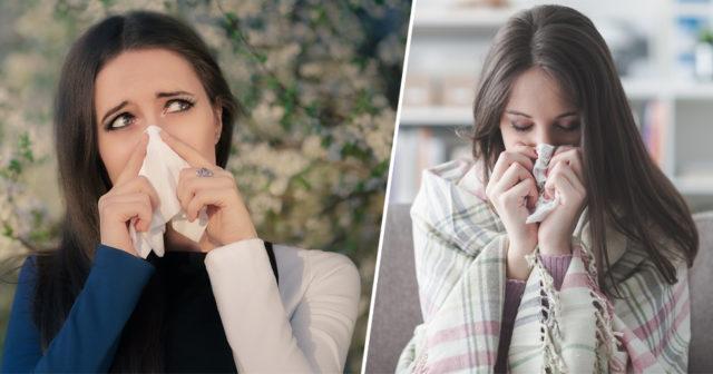 förkyld eller allergisk