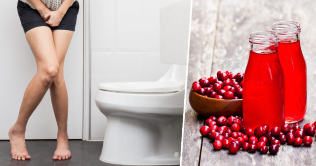 tranbärskapslar mot urinvägsinfektion