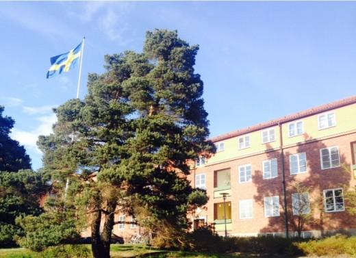Så här fint är det hemma hos mig i dag. Bf-föreningen flaggar dagen till ära.